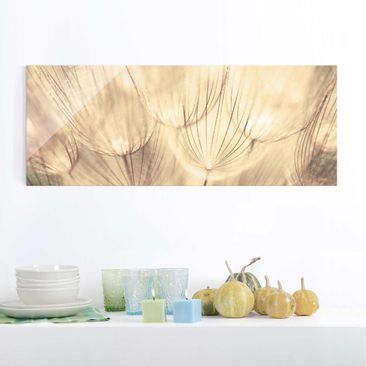 Product picture Print on Glass - Dandelions close-up in...