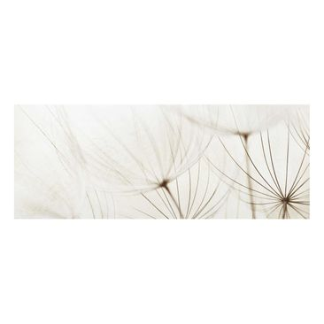 Product picture Print on Glass - Gentle Grasses - Glass...