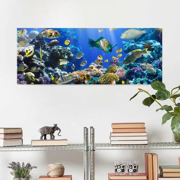 Product picture Print on Glass - Underwater Reef - Glass...
