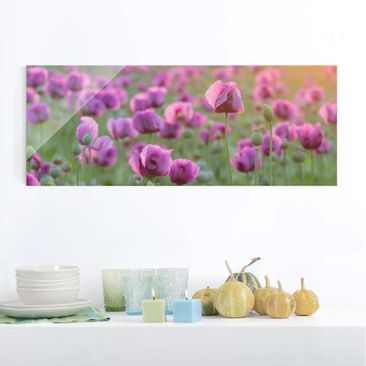 Product picture Print on Glass - Violet poppy flowers...