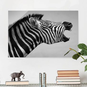 Product picture Glass Print - Rawling Zebra II - Glass...