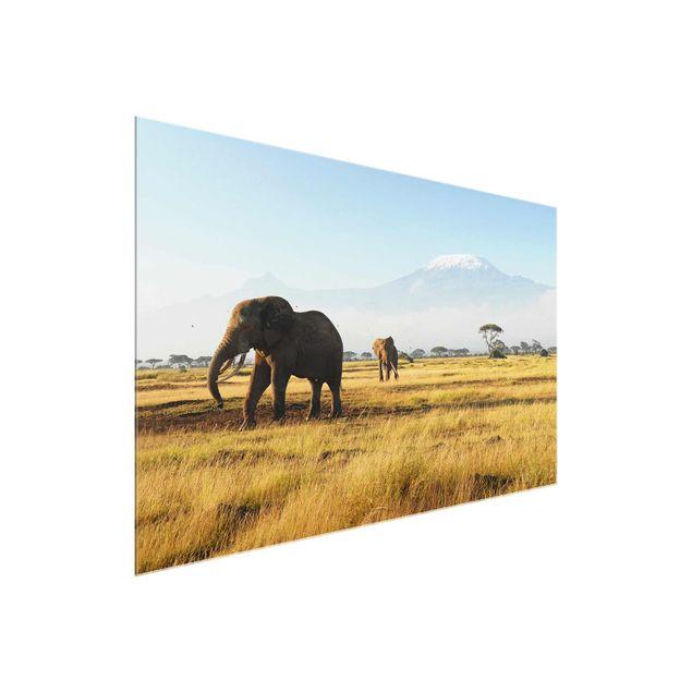 Produktfoto Glasbild Afrika - Elefanten vor dem Kilimanjaro in Kenya - Quer 2:3