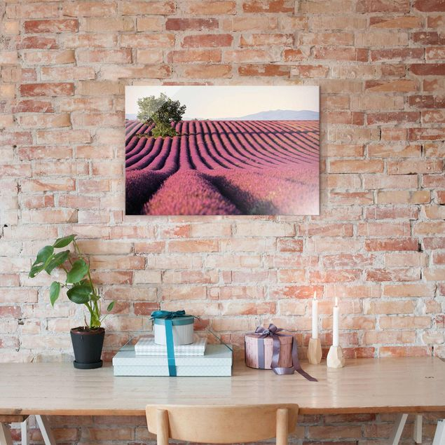 Produktfoto Glasbild - Lavender - Quer 2:3