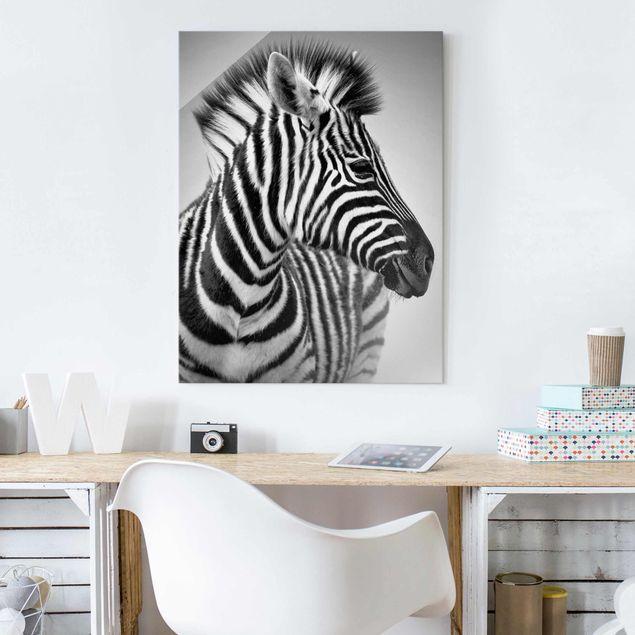 Produktfoto Glasbild - Zebra Baby Portrait II - Hoch 4:3