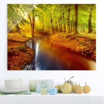 Product picture Glass Print - Autumn Forest - Glass Wall...