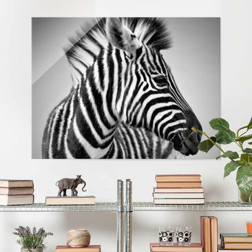Produktfoto Glasbild - Zebra Baby Portrait II - Quer 3:4