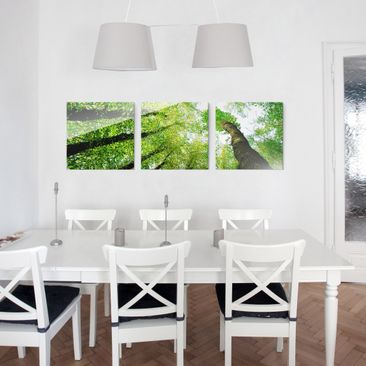 Product picture Print on Glass 3pcs. Set - Trees of life...