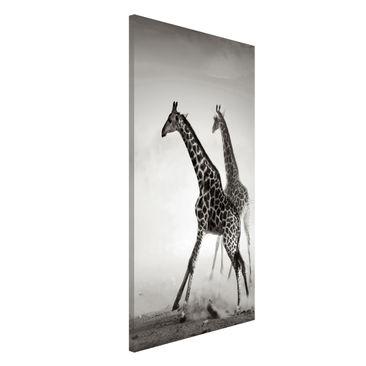 Produktfoto Magnettafel - Giraffenjagd - Memoboard Hoch 4:3