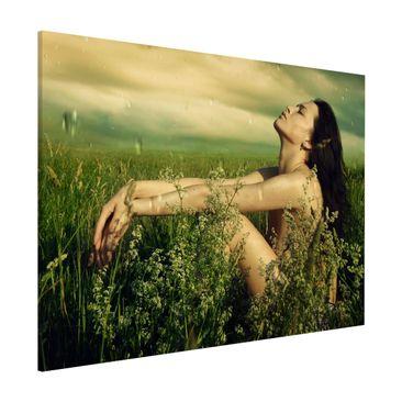 Produktfoto Magnettafel - Sommerregen - Memoboard Quer 3:4