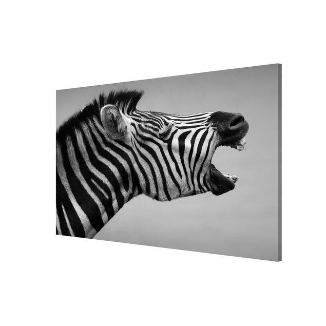 Produktfoto Magnettafel - Brüllendes Zebra II - Memoboard Quer