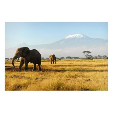 Product picture Magnetic Board - Elephants In Front Of...
