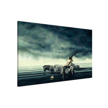 Produktfoto Magnettafel - Frauenakt mit Zebras - Memoboard Quer