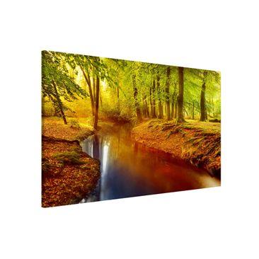 Produktfoto Magnettafel - Herbstwald - Memoboard Quer