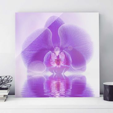Produktfoto Glasbild - Lila Orchidee auf Wasser - Quadrat 1:1