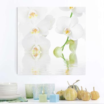 Produktfoto Glasbild - Wellness Orchidee - Quadrat 1:1