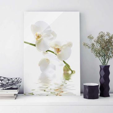 Produktfoto Glasbild - White Orchid Waters - Hoch 3:2