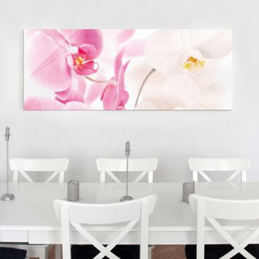 Product picture Print on Glass - Delicate Orchids -...