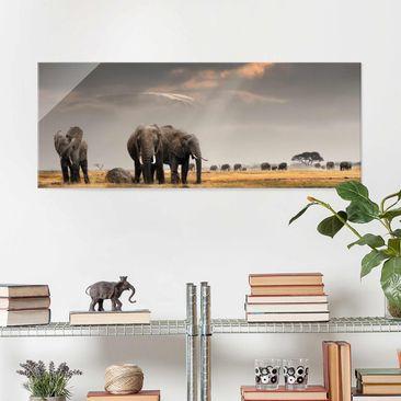 Product picture Print on Glass - Elephant savanna -...