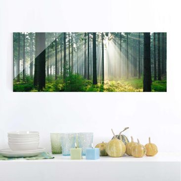 Produktfoto Glasbild - Enlightened Forest - Panorama Quer