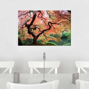 Product picture Glass Print - Japanese garden - Glass...
