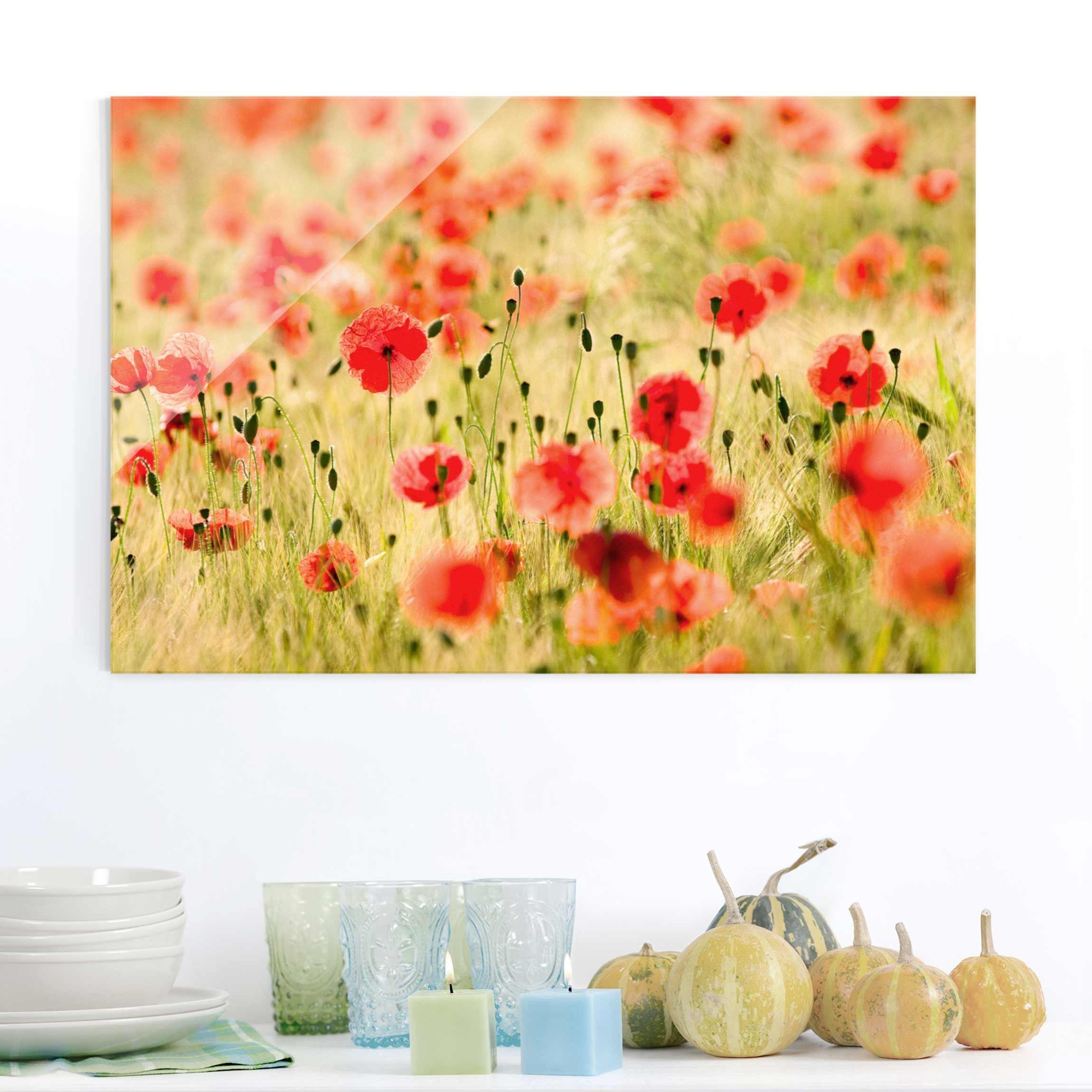 Glass Print - Summer Poppies - Glass Wall Art Landscape Format 2:3