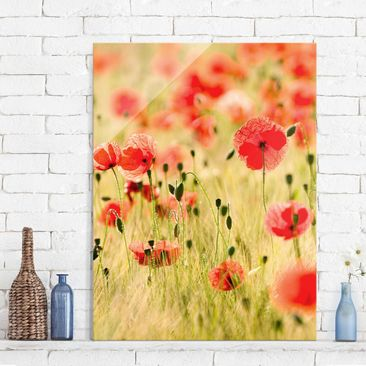 Produktfoto Glasbild - Summer Poppies - Hoch 4:3