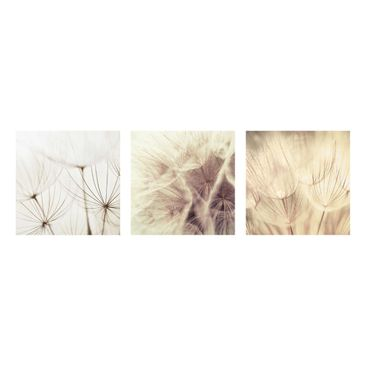 Product picture Glass Print Set - Dandelions and grasses...