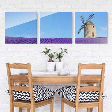 Produktfoto Glasbild mehrteilig - Lavendelduft in der Provence 3-teilig - Waldbild Glas
