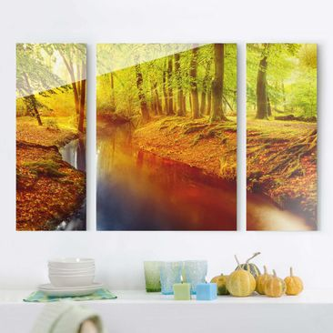 Product picture Multi-Panel Glass Print Set- Forest in...