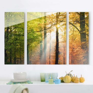 Product picture Multi-Panel Glass Print Set - Morning...