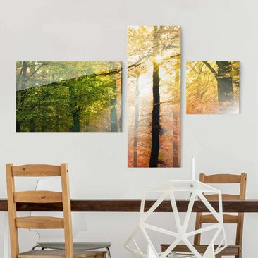 Produktfoto Glasbild mehrteilig - Morning Light Collage 3-teilig