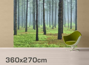 Product picture Photo Wall Mural Deep forest with pines...