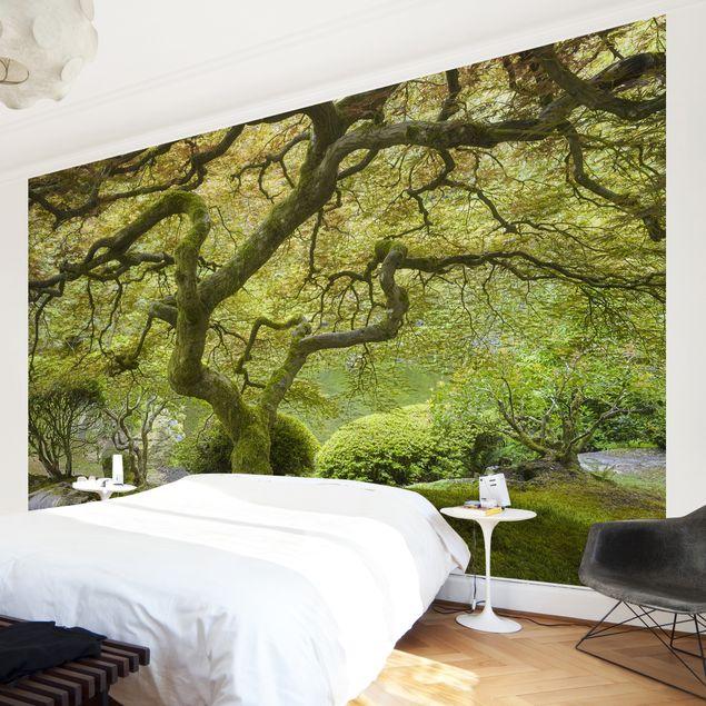 Produktfoto Fototapete Wald - Grüner Japanischer...
