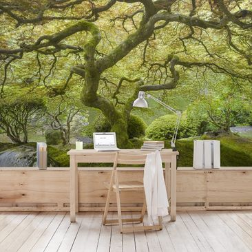 Product picture Photo Wall Mural Green Japanese garden