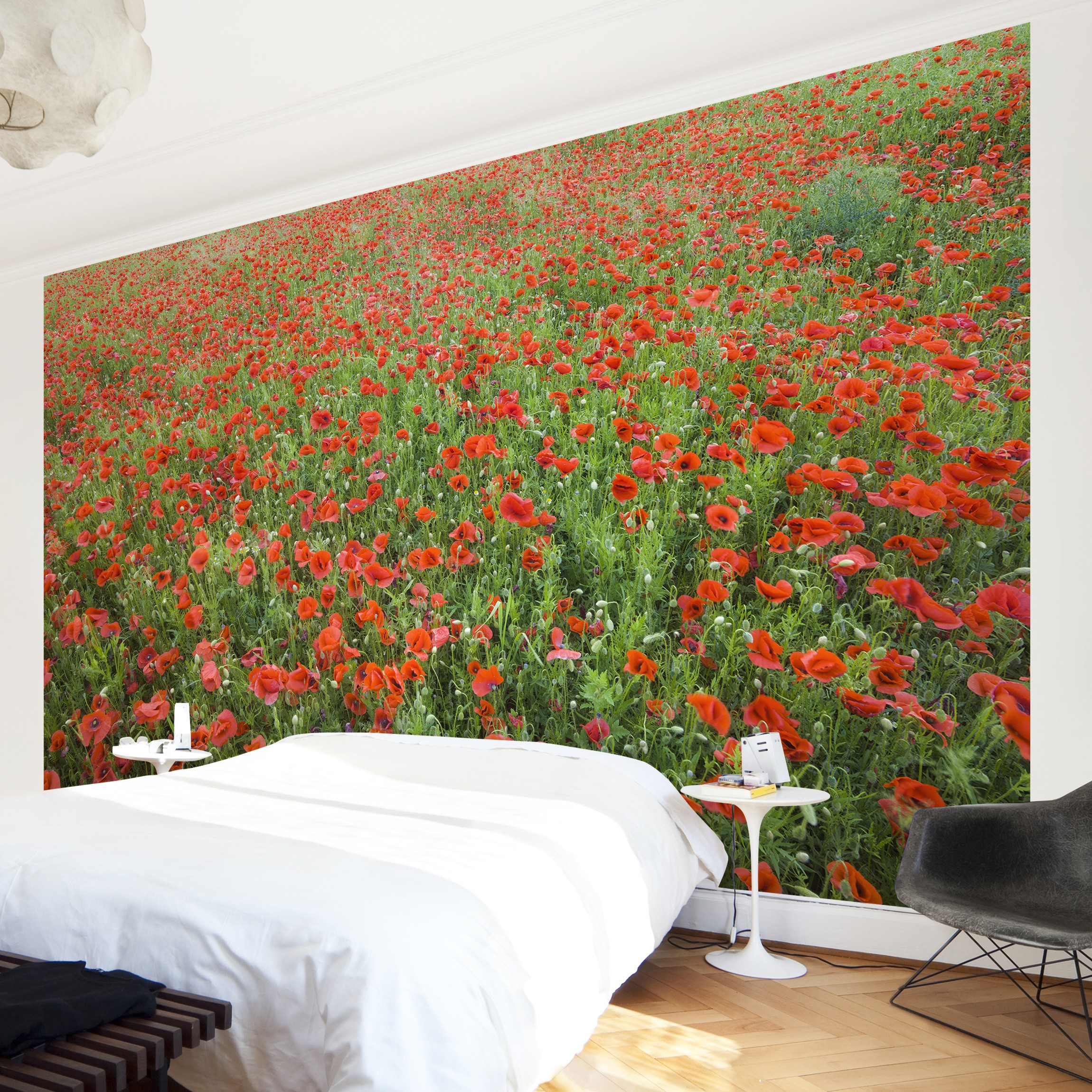 selbstklebende mohnblumen fototapete mohnblumenfeld. Black Bedroom Furniture Sets. Home Design Ideas