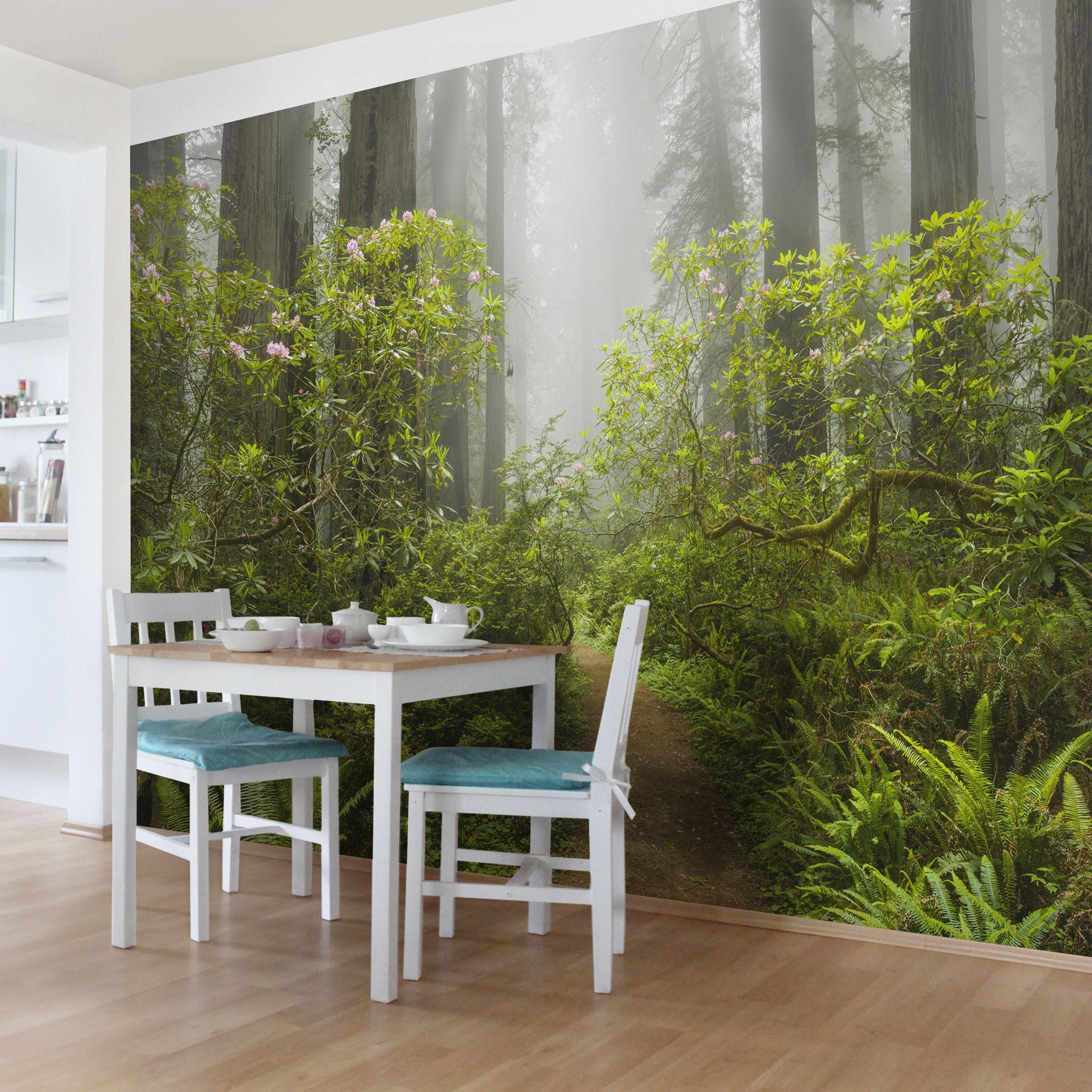fototapete wald nebliger waldpfad selbstklebende vinyltapete. Black Bedroom Furniture Sets. Home Design Ideas