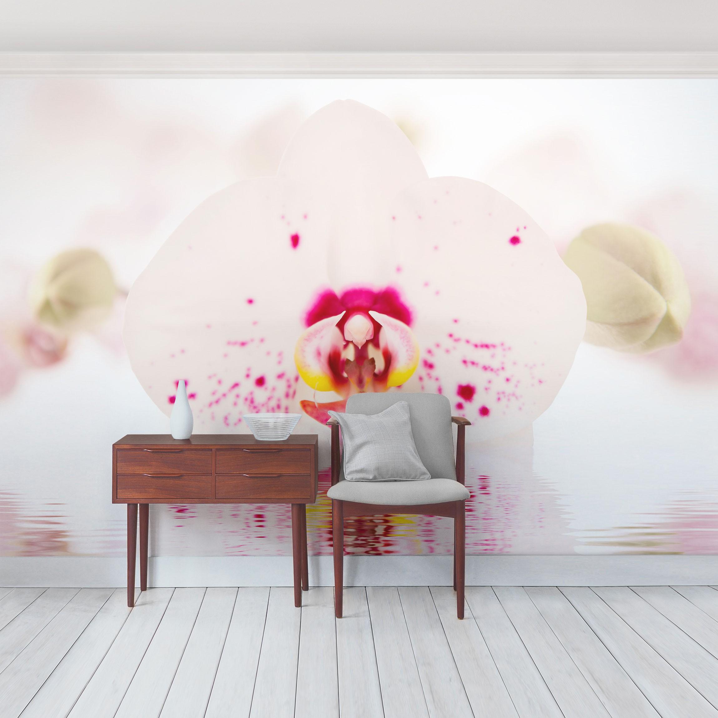 blumen fototapete selbstklebend gepunktete orchidee auf wasser. Black Bedroom Furniture Sets. Home Design Ideas