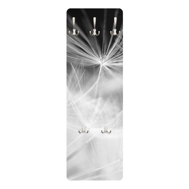 Produktfoto Garderobe - Bewegte Pusteblumen Nahaufnahme auf schwarzem Hintergrund