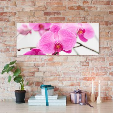 Product picture Print on Glass - Close-up of orchid -...