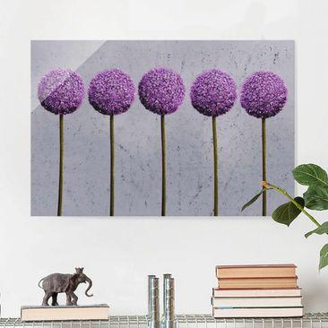 Produktfoto Glasbild - Allium Kugel-Blüten - Quer 2:3