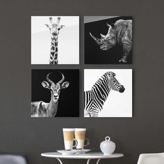 Produktfoto Glasbild mehrteilig - Safari Quartett 4-teilig
