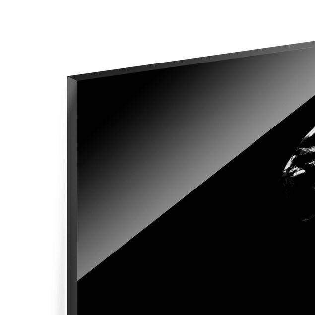 Produktfoto Glasbild - Zebra Safari Art - Panorama Quer