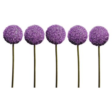 Product picture Wall Decal Allium Flower Set of 5
