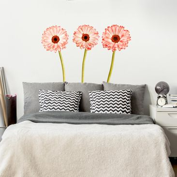 Product picture Wall Decal Salmon-coloured gerbera set