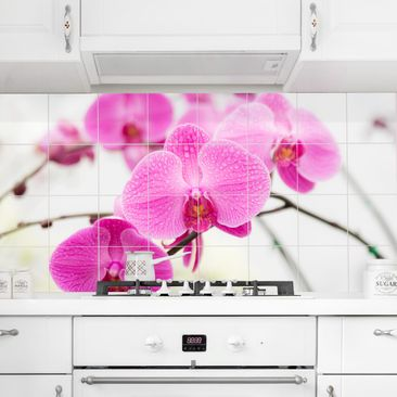 Product picture Tile Mural Close-up of orchid