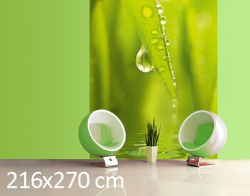 Product picture Photo Wall Mural Morning Dew II