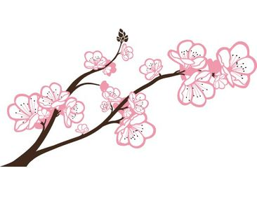 Product picture Wall Decal no.TA63 Cherry Blossoms Big