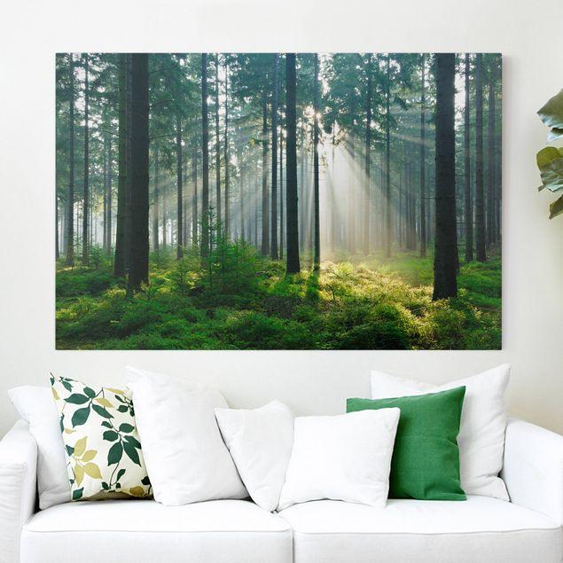 Produktfoto Leinwandbild - Enlightened Forest - Quer 2:3, vergrößerte Ansicht in Wohnambiente, Artikelnummer 205219-XWA