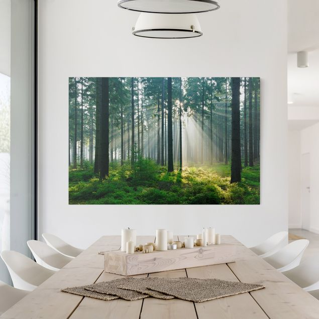 Produktfoto Leinwandbild - Enlightened Forest - Quer 2:3, in Wohnambiente, Artikelnummer 205219-WA