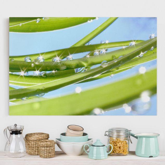 Produktfoto Leinwandbild - Fresh Green - Quer 2:3, vergrößerte Ansicht in Wohnambiente, Artikelnummer 205255-XWA